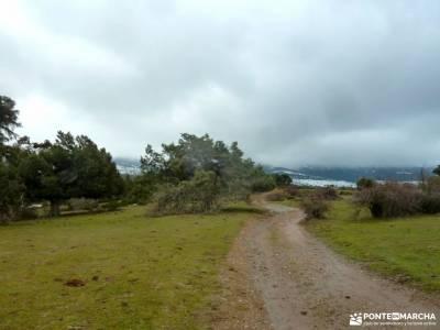 Acebos y Enebral de Prádena; la horizontal ruta cercedilla rutas montaña cultura viajes
